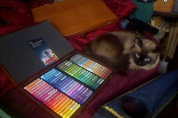 Gallery Artist Oil Pastels
