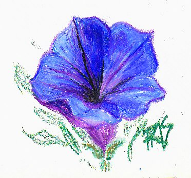 Sketch of a blue flower with loose green leaves on white in Van Gogh oil pastels