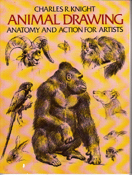 Animal Drawing by Charles R. Knight book cover