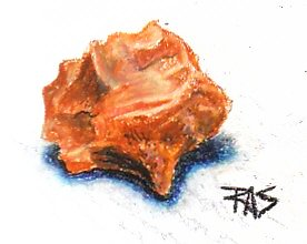 Oil pastel painting of reddish brown chert stone with curved fluting, in Faber-Castell oil pastels.