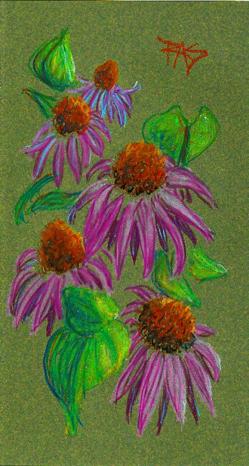 Pink-purple cone flowers on a dark green background in Oil Pastels Workstation oil pastels by Robert Sloan.
