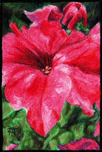 The finished pink petunia painting.