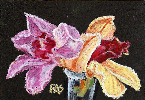 Purple and white orchid and bronzy reddish and yellow orchid in a clear vase on a black background, painted impressionistic in oil pastels.