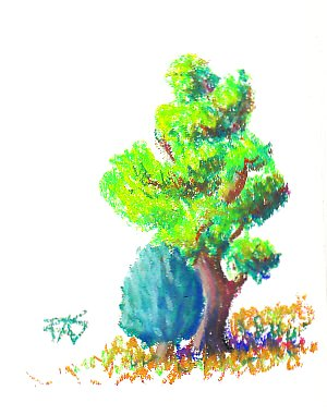 Tree and Bush study in Caran d'Ache Neopastels oil pastels