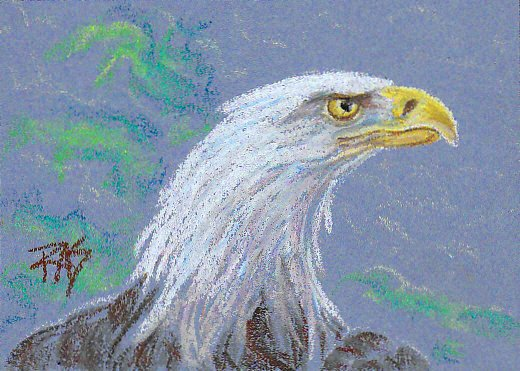 Oil pastel drawing of bald eagle in profile, neck strong, fierce, wings rising, shown from shoulders up. Loose green foliage in background.