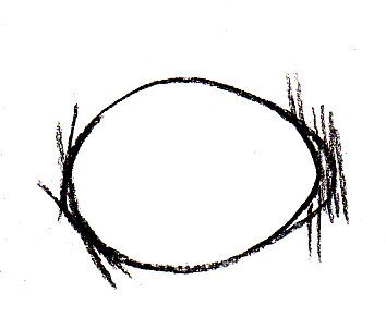Sketch of egg shape