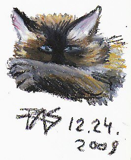 Gesture drawing turned color study of a cat's face, forepaw across muzzle.