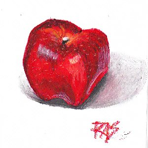 Red Delicious Apple in Sennelier Oil Pastels by Robert A. Sloan.