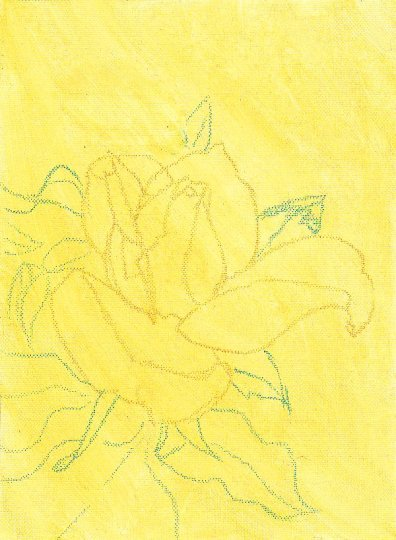 Yellow Rose canvas paper with first Raw Sienna wash and outlines visible.